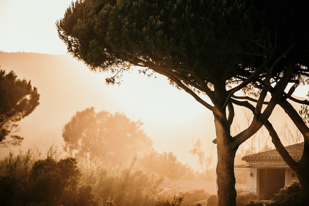 Un mariage à la plage lumières de provence